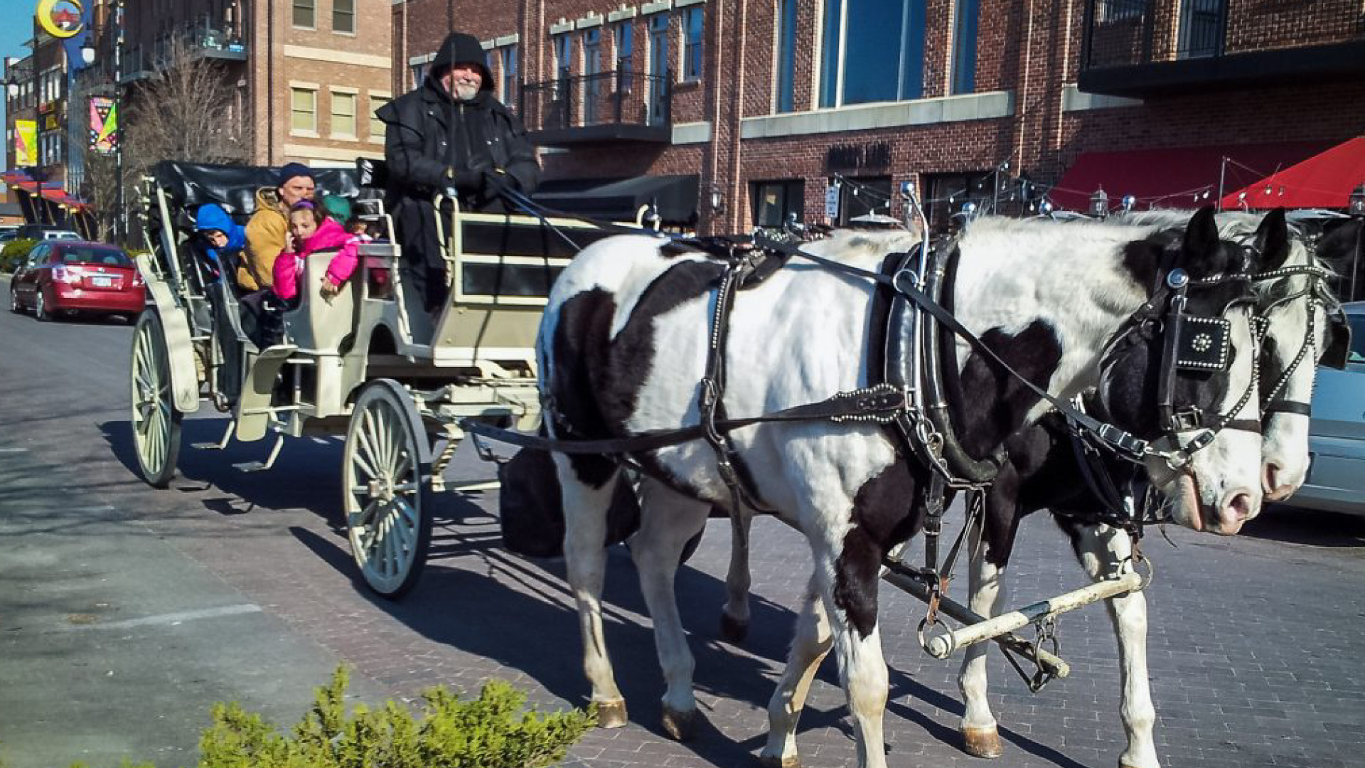 Carriage Rides in Old Town Square